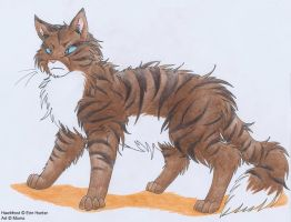 Warrior Cats: Hawkfrost by Mion-93