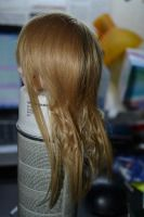 wig 1 by Goddes-of-time