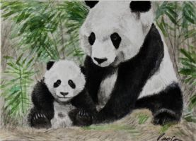 Pandas ACEO by skippypoof