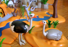 Playmobil Africa - Ostriches by The-Toy-Chest
