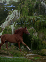 Hanoverian Photomanip Contest by cattlebaron1