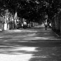 Long and Winding Road by nfilipevs