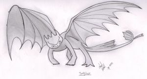Toothless-Traditional by The-Armagedon