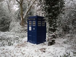 The Tardis by TardisHire