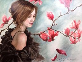 Magnolias by NCEART