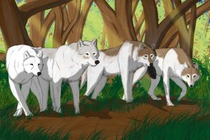 the pack by bravo9653