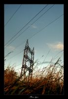 Power lines by BrightRedFox