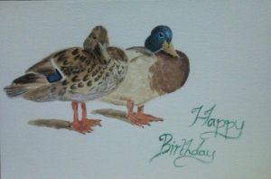 Water colour Ducks by meeart