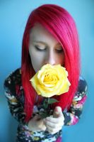 yellow rose by chelsea-martin