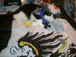 My cat's Prussia cosplay by hetaliahandhearts
