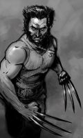 Wolverine movie by pungang
