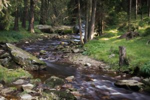 black river in the Erzgebirge by LaEpona