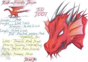 Riok the Friendly Dragon ID by Riok