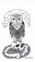 owl and skull by RidiculousArts