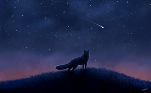 Shooting Star by Humius