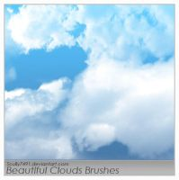 Beautiful Clouds Brushes by Scully7491