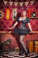 Deluxe Circus Show by falt-photo