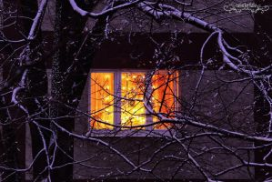 winter window by Wintertale-eu