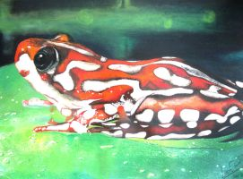 Poison Frog by sean-seian