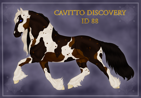 Cavitto Discovery ID 88 by Cloudrunner64