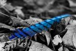 Blue Jay Feather by RogueVulcan