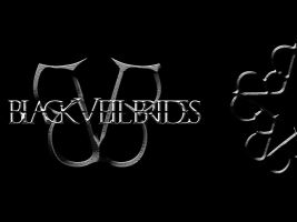 BlackVeilBrides cover face book with texture by DiegoSkywallker