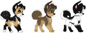 Mix puppy adopts by MonsoonWolf