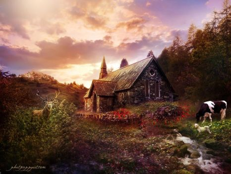 The Country Church by Phatpuppyart-Studios