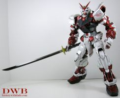 PG Gundam Astray Red Frame by Bang-Doll-SSI