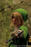 Link by ShadowsMask