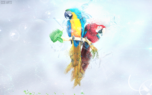 Two Macaw by CCG-ARTS