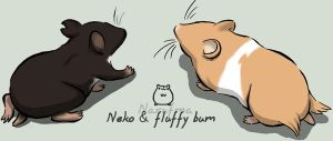 Neko : Fluffy bums by narufma