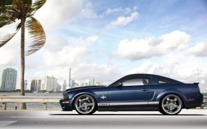 Shelby GT500KR by lovelife81