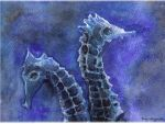 Seahorses by Tory-Magnetto