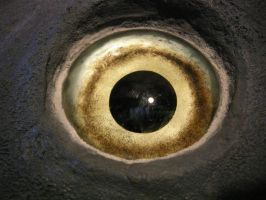 The Eye of the Mola by Jubokko