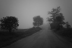 Into the dark - I by chirilas