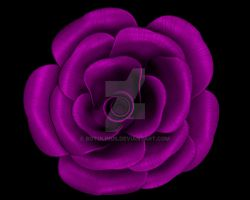 Just a Rose by Botolinus