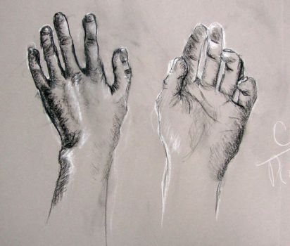 My hands exclaimation point by cardcaptorclaire