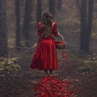 Trail of Red by parvanaphotography