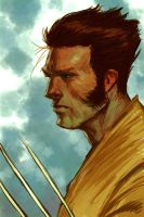 WOLVERINE WEDNESDAY - 17 by reau