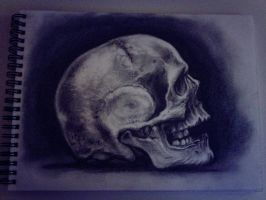 skull in graphite by AlmightyArt