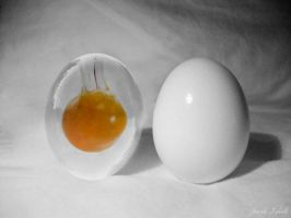 Glass Egg by HarelForge
