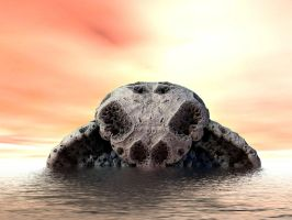 turtle fossil by Oxnot
