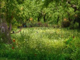 Butterfly Meadow by lilleypants