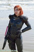 Shepard at the Beach by Viverra1