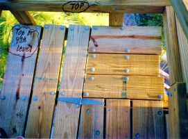 Our Treehouse Built by My Husband {Photo 48} by Empress-XZarrethTKon