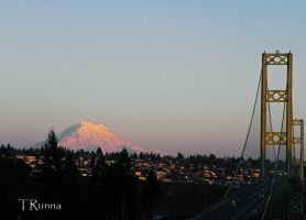 Rainier from Across the Narrows  by TRunna