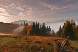 Autumn on the hill. by lica20