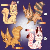 Fennec Fox Adopt Auction! *CLOSED* by KittenthePsycho