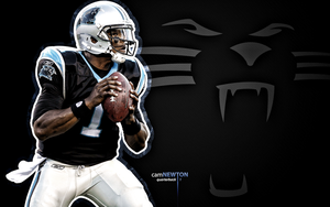 cam newton wallpaper 7 by jb-online